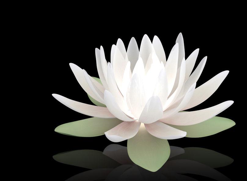 Meditation a Beginning